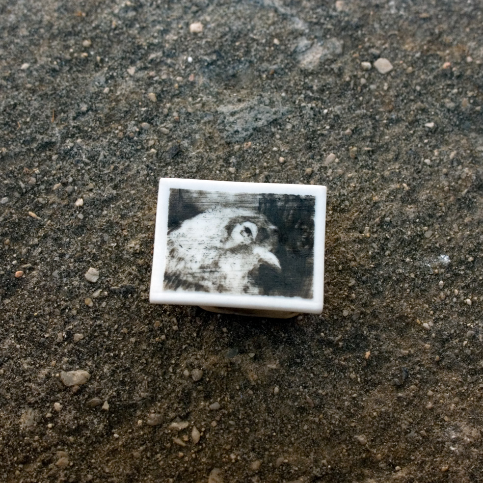 240 - Phossil 111 - Pigeon detail (2015) - 4cm x 3.1cm x 0.2cm approx.- hand-painted with pigment on porcelain, fired twice up to 1280cº